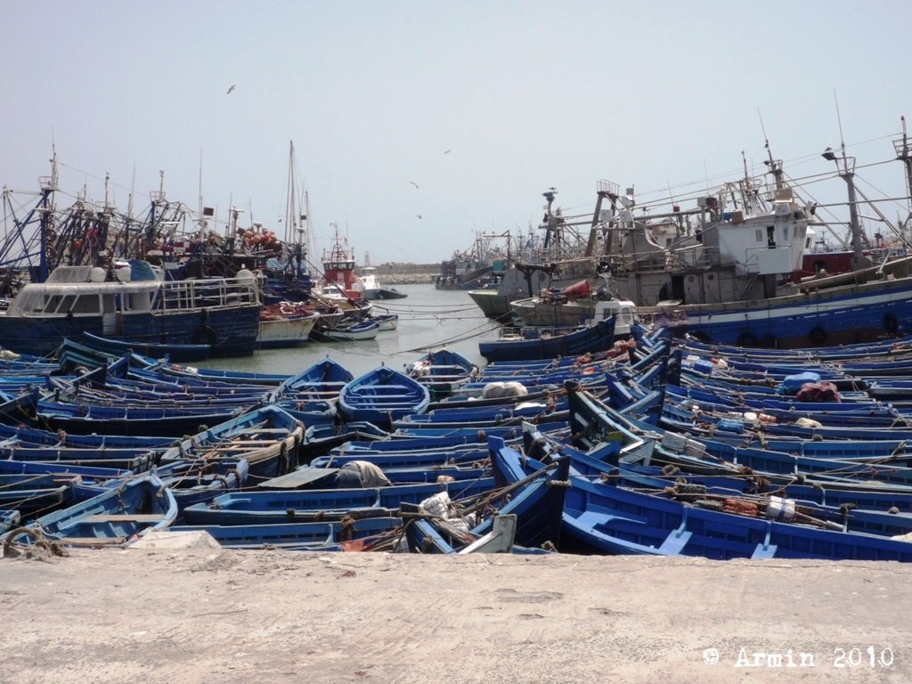 Maroc2010_026.JPG.93ff6aee1f7f89b46c800834a766d21b.JPG