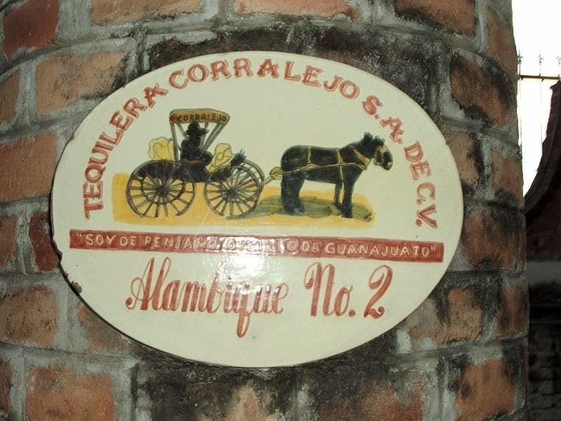 Mexique2004_020.JPG.5b7c177e8a4aef4665efd399c620cf12.JPG