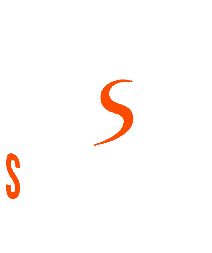 Spirit of Rally - Forum WRC